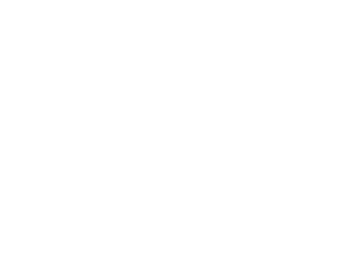 FJD Consulting